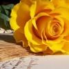 Какие подобрать слова благодарности любимому мужчине?