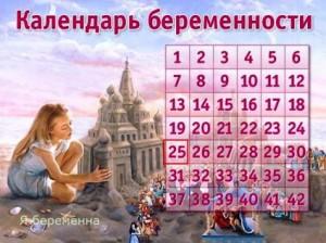 интерактивный календарь беременности