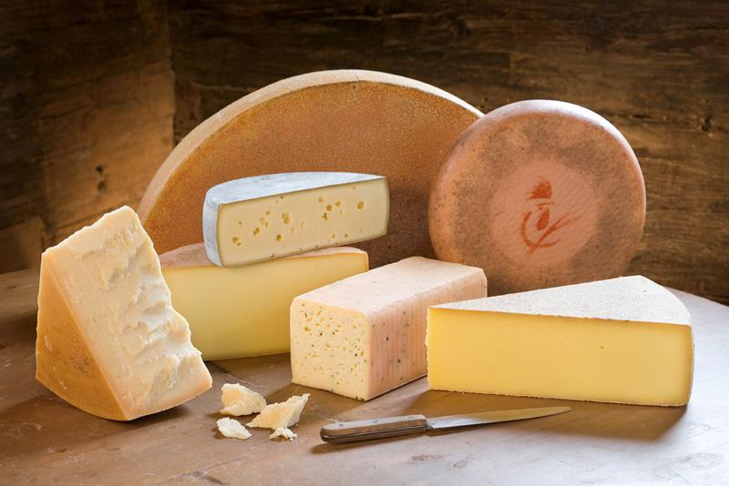 Сырная диета: правила, эффективность, отзывы